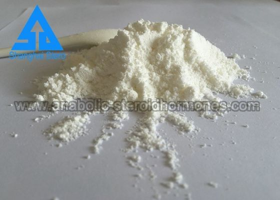 Chiny GMP Standard Testosteron Enanthate Naturalne steroidy anaboliczne CAS 315-37-7 dystrybutor
